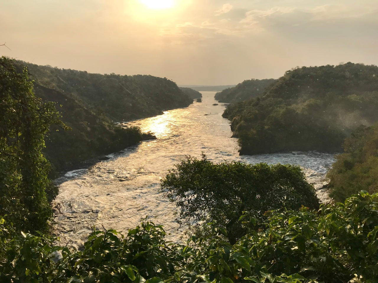 Exploring Entebbe and the Journey to Murchison Falls National Park